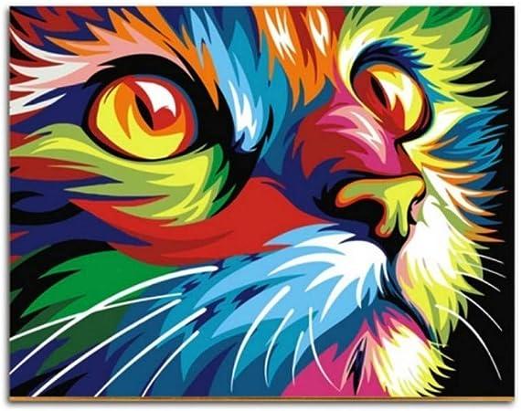 W S Ryuanyuan Dessin Chat Animaux Peinture A L Huile Par Numeros Sur Des Kits Sur Toile Coloriage Par Numeros Cadeau Unique Maison Mur Art Decor 16x20 Pouce 40x50 Cm Sans Cadre Amazon Fr Sports