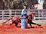 Gooseberry Body Flex 4lb Horse Joint Supplement Say Goodbye to Hock injections with This Product. Supports Connective Tissue and Joint Health in Horses 4LB