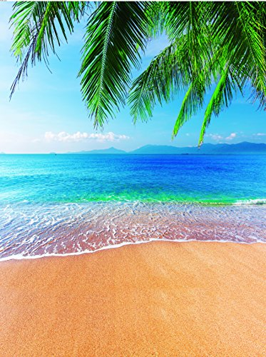 Dudaacvt Tropical Beach Photography Backdrops 5x7ft Sea & Blue Sky & Coconut Tree Vinyl Photo Backgrounds Customized Studio Props Ocean Backdrop Q0060507