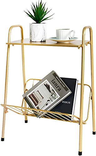 Tiita Gold Metal Side Table Two-Tier End-Table Magazine Storage Accent Table - the best living room table for the money