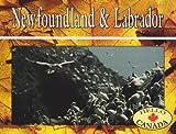 Newfoundland and Labrador, Lawrence Jackson, 1550412612