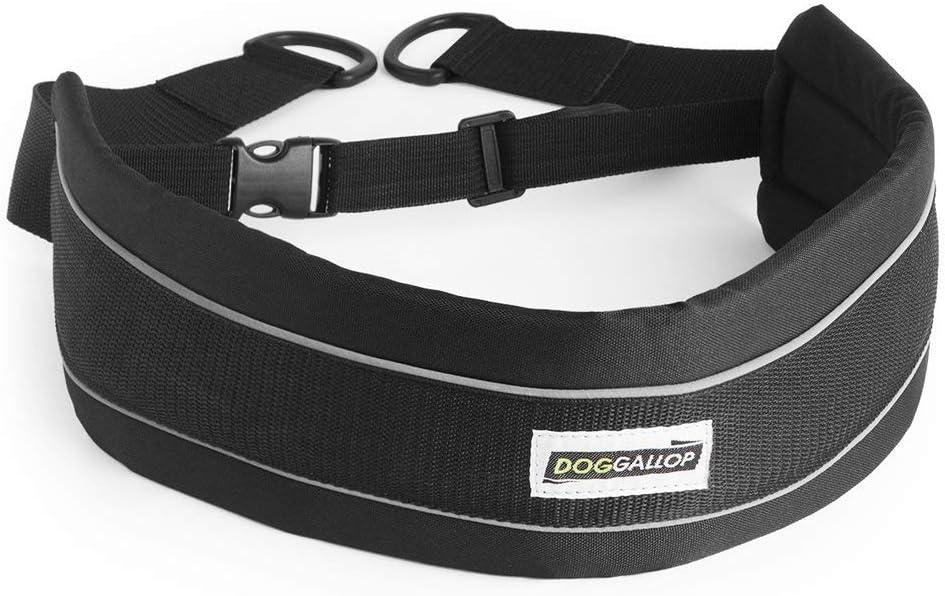 biozoo DOGALLOP Cinturon CANICROSS 19 X 50 CM: Amazon.es ...