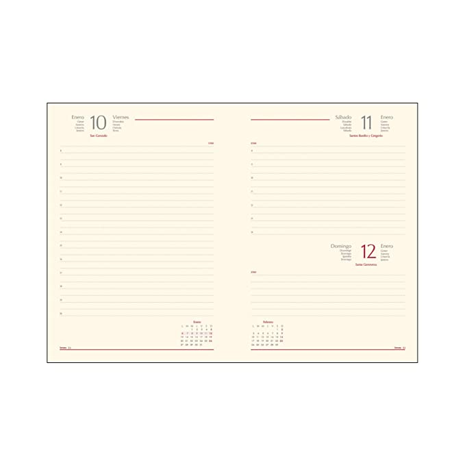 Amazon.com : dohe - Agenda, Day Page 15 x 21 cm : Office ...