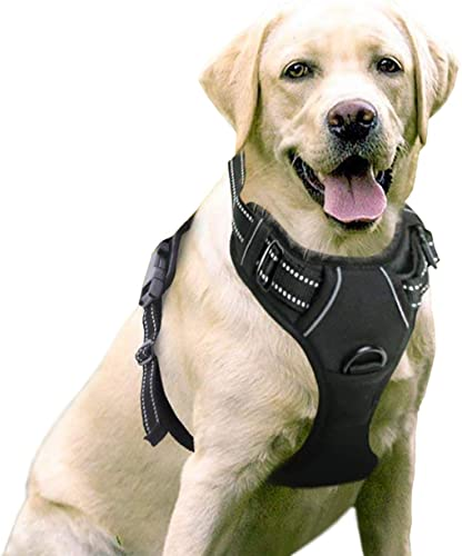rabbitgoo-Dog-Harness-No-Pull-Pet-Harness-Adjustable-Outdoor-Pet-Vest-3M