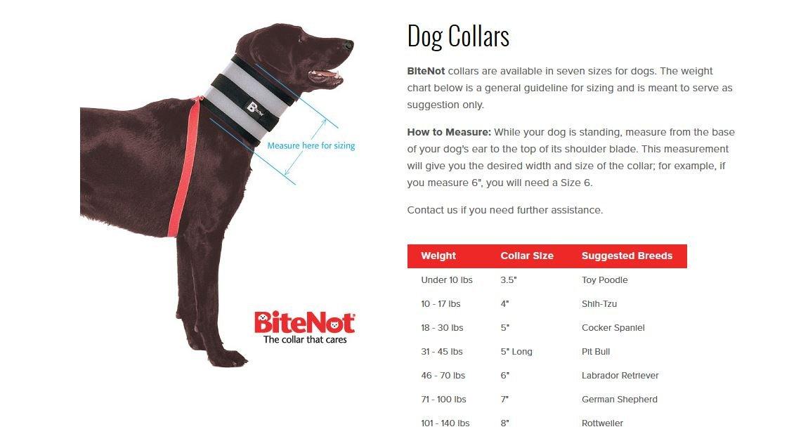 BiteNot Collar, 7'' W x 28'' L