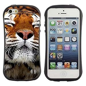 "Pulsar iFace Series Tpu silicona Carcasa Funda Case para Apple iPhone SE / iPhone 5 / iPhone 5S , Feliz piel del tigre animal anaranjada linda"""
