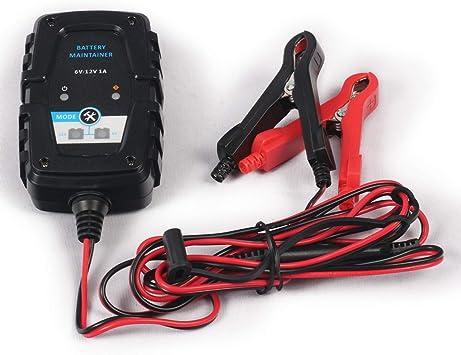 6V//12V 10Amp Batería Inteligente Cargador Automático De Goteo Caravana Moto