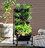 Watex Metal Mobile Green Wall - Single Frame