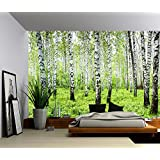 Picture Sensations Canvas Texture Wall Mural, Landscape Birch Trees, Self-adhesive Vinyl Wallpaper, Peel & Stick Fabric Wall Decal - 48x36
