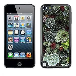 "Pulsar Snap-on Series Teléfono Carcasa Funda Case Caso para Apple iPod Touch 5 , Cono del árbol natural de la Selva Verde"""