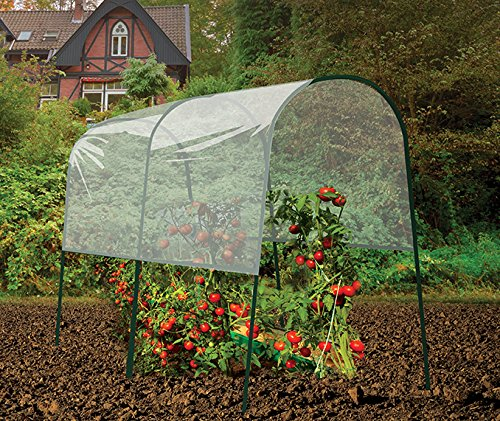 Gardman 7623 Tomato Greenhouse, 78.75'' Long x 48'' Wide x 78.75'' High