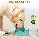 STOON Dog Water Bottle, Leak Proof Portable Pet