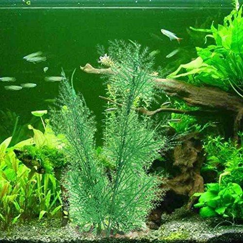 Daxibb Plantas acuáticas Plantas Plástico Agua Ornamento Base Pecera Tanque Acuario Decoración Anterior: Amazon.es: Hogar