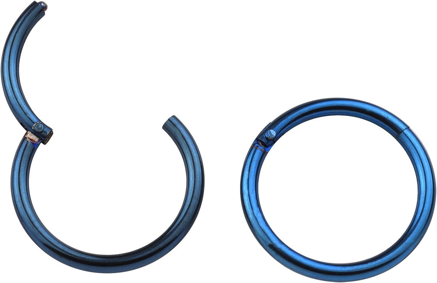 Great my shop 16G Stainless Steel Nose Ring Cartilage Earring Hoop Earrings Hinged Hoops Seamless Ring 10mm