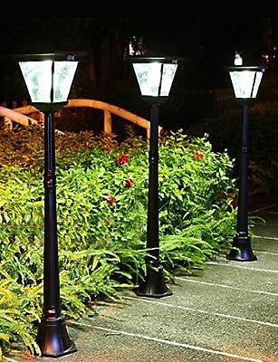 ZQ Character design 31PCS 0.07W White LEDs LED Solar Garden Light