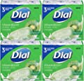 Dial Vitamin Boost Amazing B Lotion Infused Glycerin Bar Soap, 3 Count, 4 Ounce (Pack of 4) Total 12 Bars by Dial