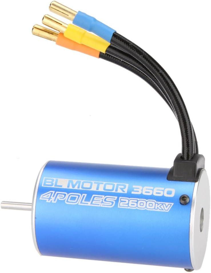 JVSISM 3660 4Poles 2600Kv Brushless Motor F/ür Rc 1//8 1//10 Truck Gel?ndewagen Boot