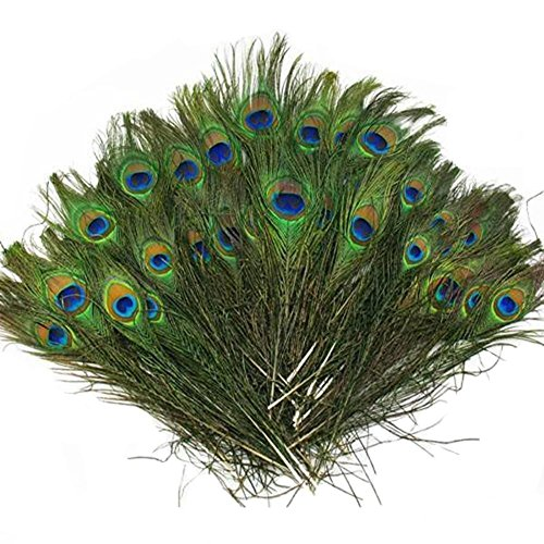 (Vivian Beautiful Natural Peacock Feathers Eye Peacock Tail Feathers 10