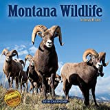 2018 Montana Wildlife Wall Calendar