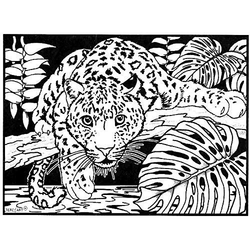 LAMINA PARA COLOREAR con caja de rotuladores. Jaguar: Amazon.es: Hogar