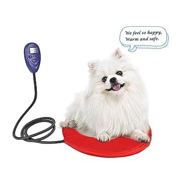 petleso perro calefactables - Fregadero para pequeñas mascotas o gatos con kratzbeständigem Cord diseño Temperatura Regulable de 20 a 55 ºC: Amazon.es: ...