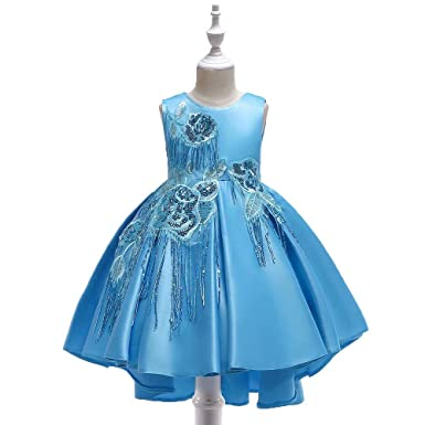 c7bcf17fb Amazon.com  Chic Baby Girls Flower Princess Dress Birthday Pageant ...