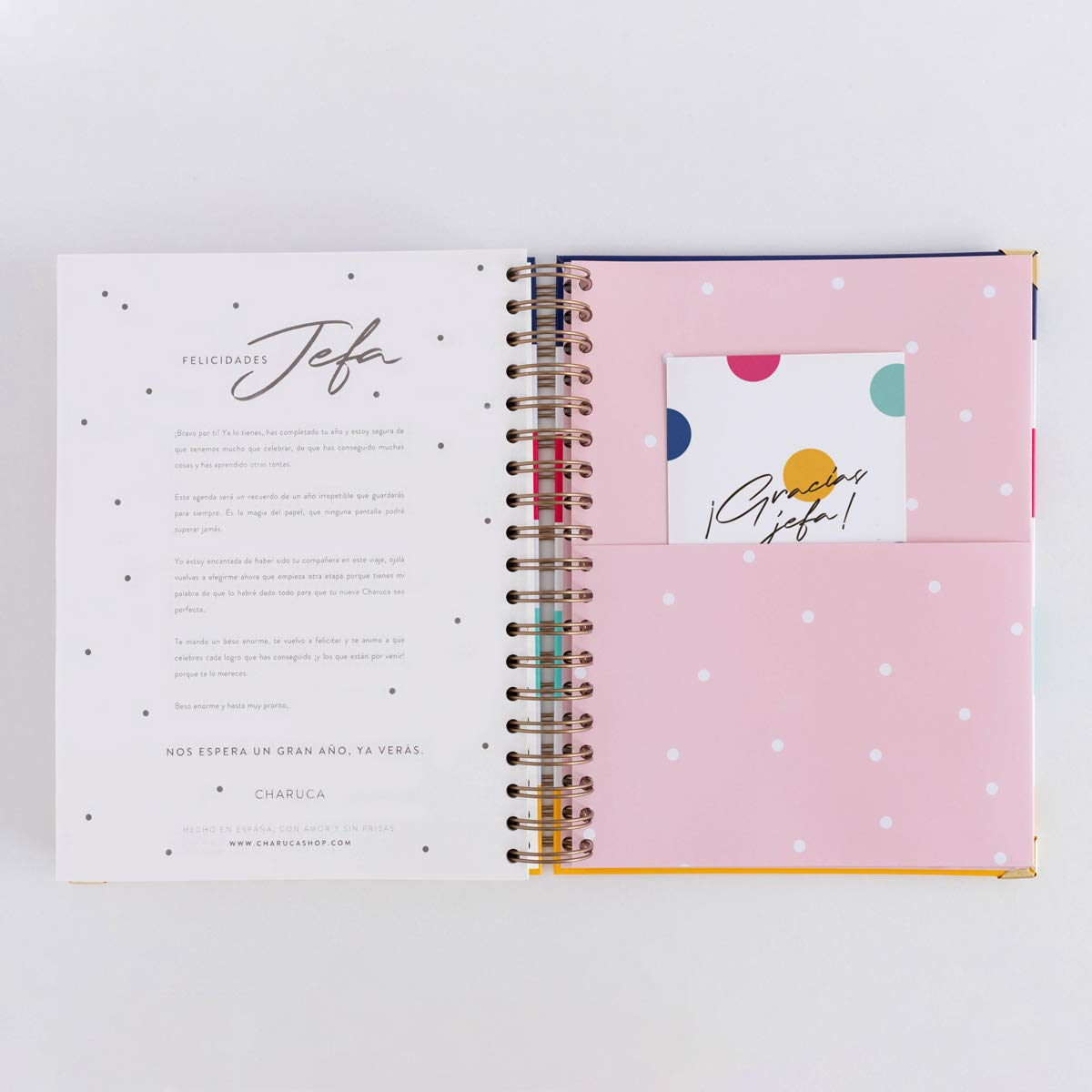 Amazon.com : 19-20 Daily Diary Head Stripes Large : Office ...