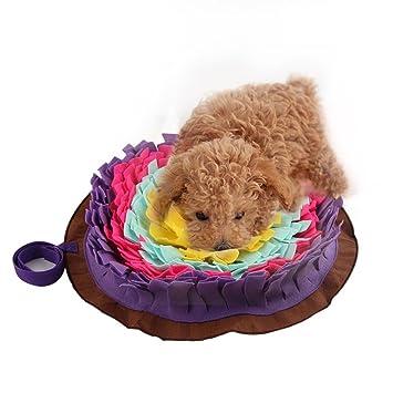 Generp Para perros entrenamiento manta Perro Ronda Pet Sniffing Pad Lavable Entrenamiento Manta Alimento Estera Piecing Multicolor: Amazon.es: Instrumentos ...
