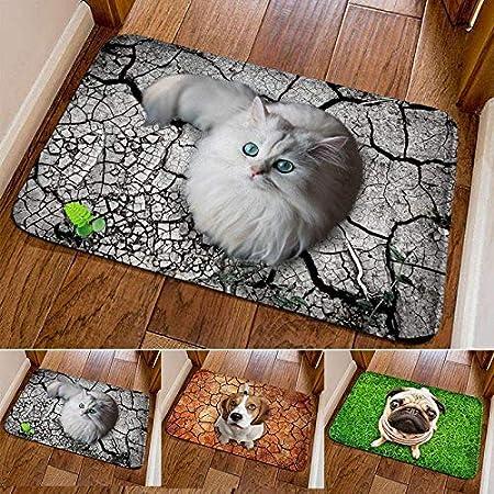 Yealsha Bathroom Mat Cute 3D Print Square Non-Slip Floor Mat for Kitchen Bath Room