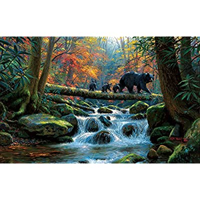 Sunsout 53064 Keathley Precarious Crossing Puzzle 1000 Pezzi
