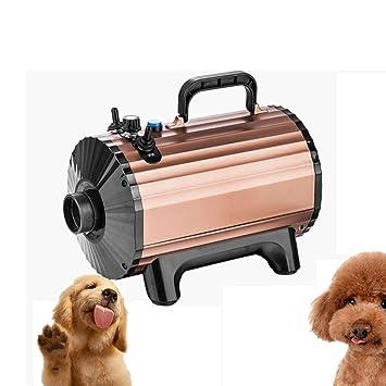 MAL Máquina sopladora de Agua para Perros, secador de Pelo para Mascotas de Alta Potencia Teddy Golden Retriever, secador de baño para Perros Grandes: ...