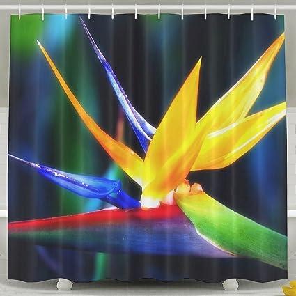Bird Of Paradise Shower Curtain Waterproof Water Repellent Antibacterial Decorative Bathroom Curtains