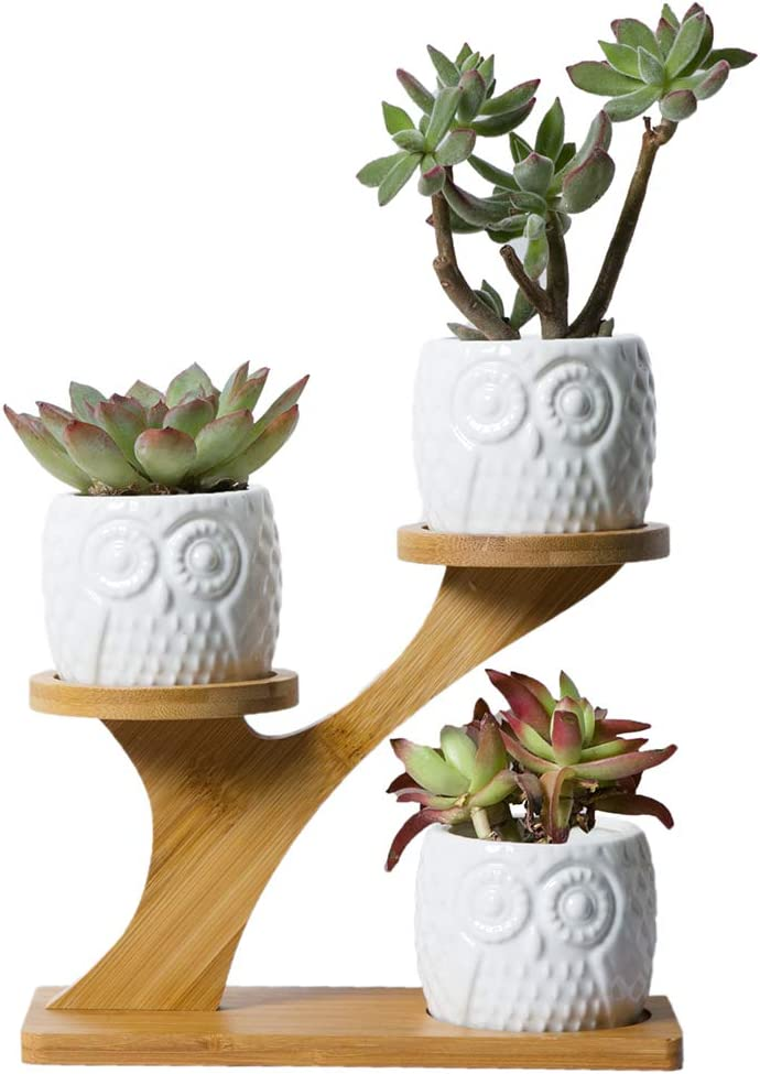 YXMYH 3pcs Owl Succulent Pots with 3 Tier Bamboo Saucers Stand Holder -Home Office Desk Garden Mini Cactus Pot Indoor Decoration- White Modern Decorative Ceramic Flower Planter Plant Pot with Drainage