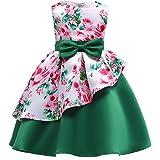 Rysly Kids Sleeveless Pageant Dress Flower Bow Party Wedding Dresses for Toddler Girl