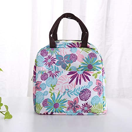 Portable Insulated Tote Picnic Lunch Multi-color Optional C ...