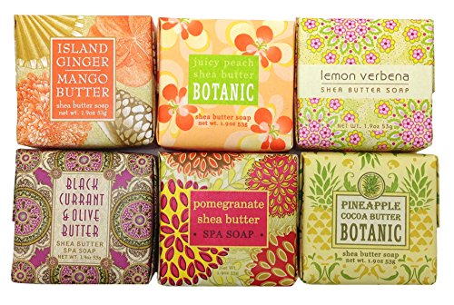 Greenwich Bay TROPICAL FRUIT Soap Sampler Gift Set, Mini Shea Butter Soap Set Scents – Ginger Mango, Peach, Lemon Verbena, Black Currant, Pomegranate and Pineapple (6 x 1.9 oz)