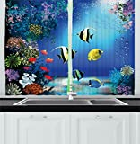 Images of Kitchen Window Curtains Underwater Kitchen Curtains by Ambesonne, Tropical Undersea with Colorful Fishes Swimming in the Ocean Coral Reefs Artsy Image, Window Drapes 2 Panels Set for Kitchen Cafe, 55W X 39L Inches, Blue