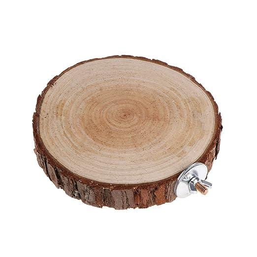 CADANIA Pet Platform Perch Round Wooden para Chinchilla Aves Loro ...