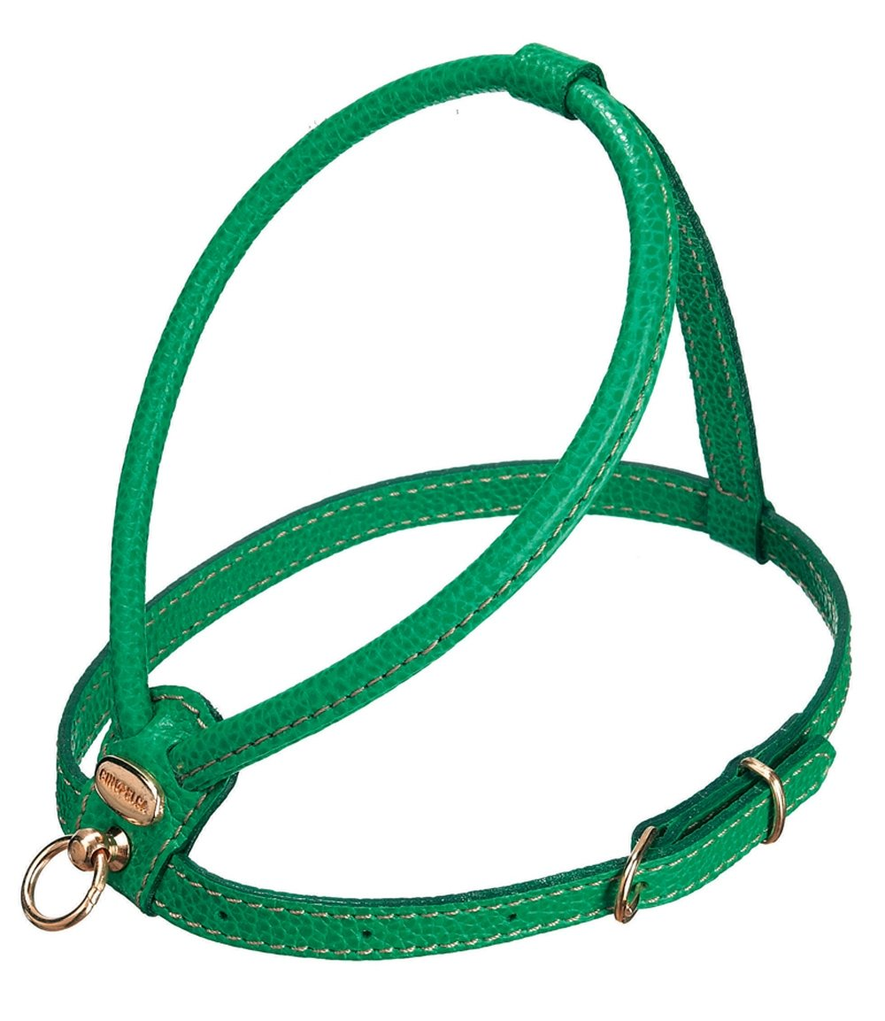 Large Petego La Cinopelca Tubular Calfskin Dog Harness with Pebble Grain Finish, Green, Large, R718
