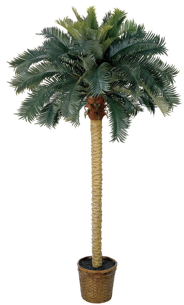 Nearly Natural 5107 Sago Palm Silk Tree, 6-Feet, Green by Nearly Natural