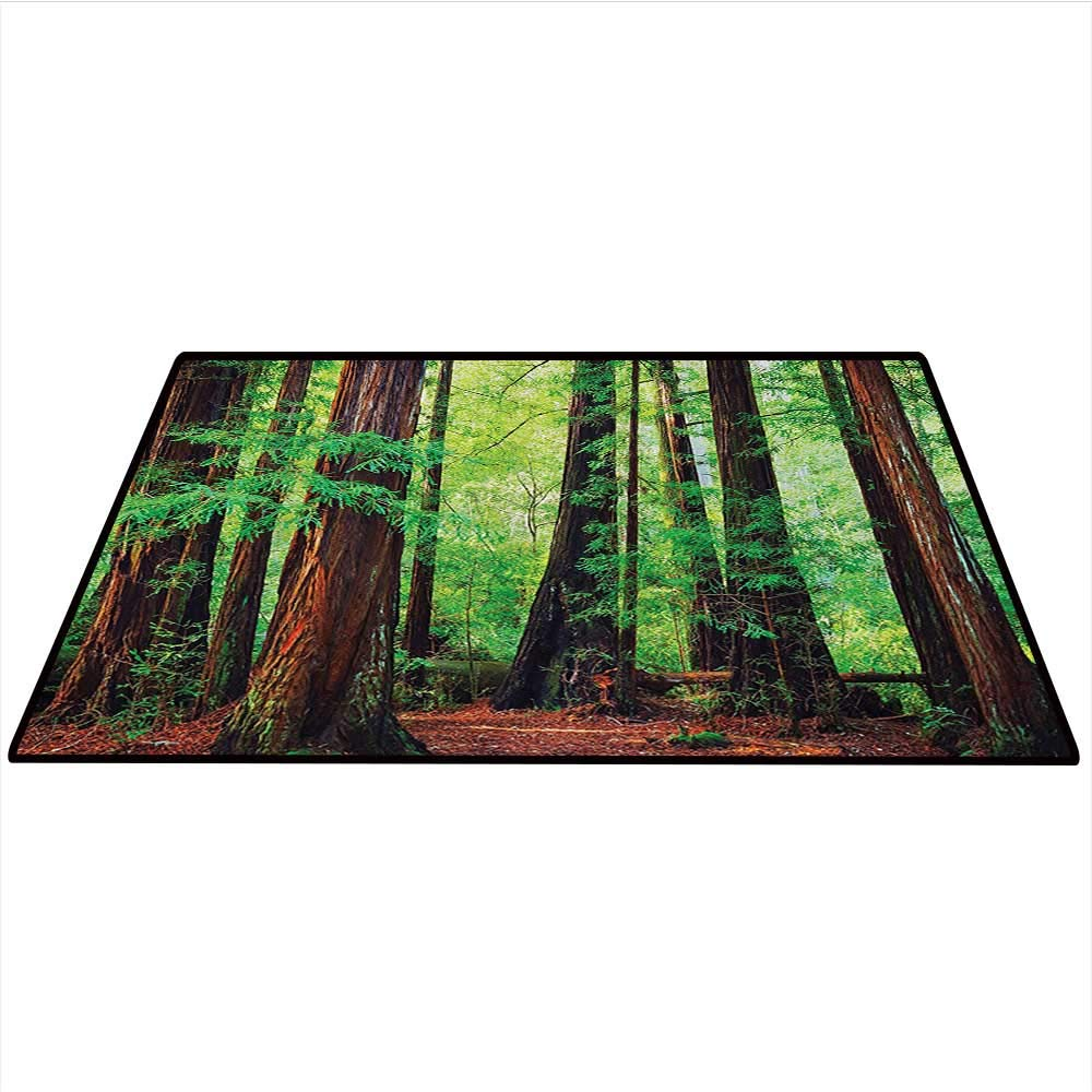 Tree Woodland Anti-Static Area Rugs Redwood Trees Northwest Rain Forest Tropical Scenic Wild Nature Lush Branch Image Soft Area Rugs 2
