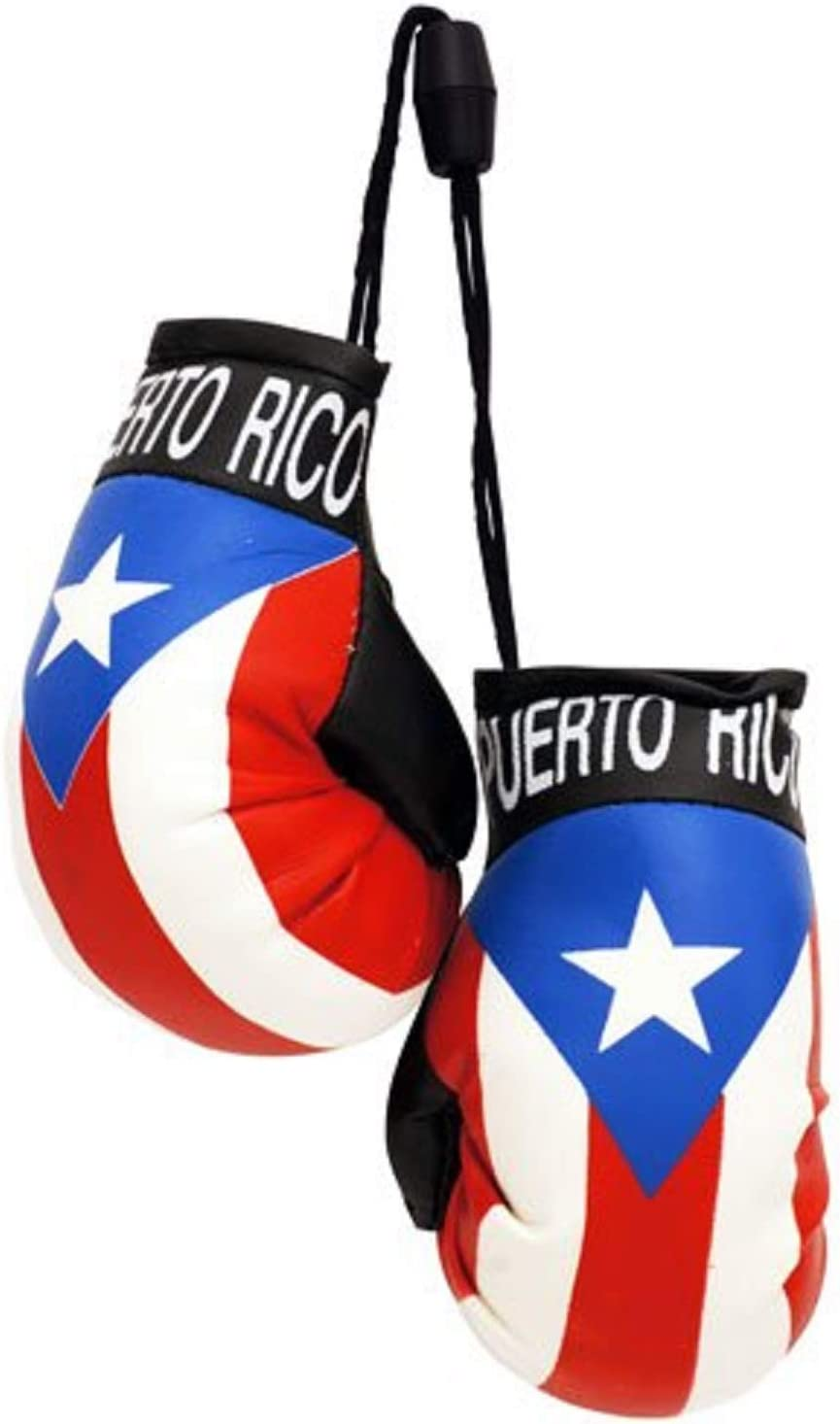 Boxing Gloves PUERTO RICO
