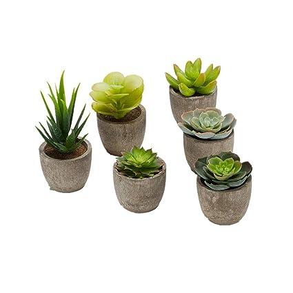 Faux piante grasse, falso artificiale in vaso piante succulente ...