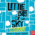 Little Bits of Sky Audiobook by S. E. Durrant Narrated by Adjoa Andoh