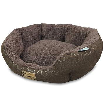 Perros Pequeños Y Gatos, Mascotas, Productos, Casa De Perro, Teddy Nieve, Perros Pequeños, Cuatro Temporadas,Chocolate M: Amazon.es: Productos para mascotas