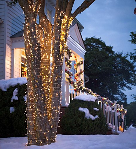 Lumineo Led Lights