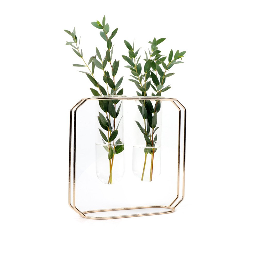ec4c39deae26 GUOLIAN Hydroponic Vase Home Décor - Vase for Flowers   Planter Decorations  Container - Rose Gold Metal Frame