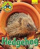 Wildlife Watchers: Hedgehog 2017 (Ruby Tuesday Readers)