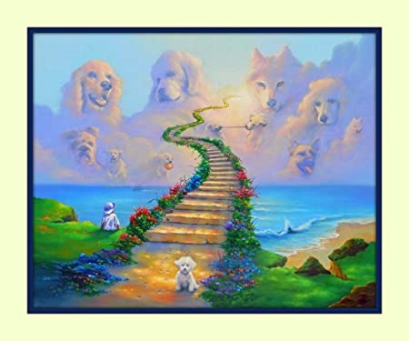 Rainbow Bridge All Dogs Go To Heaven 11x14 Matted Art Print Pet And