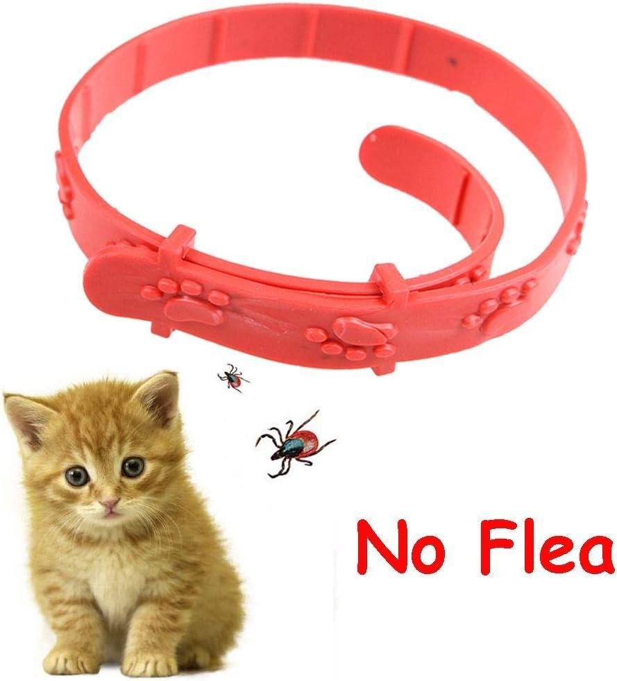 Ruan Correa para el Cuello Ajustable para Mascotas, antipulgas, para Perro, Gato, Conejo, Correa para el Cuello, antiácaros, Acari, garrapatas, remedio de Mascotas, Color Rojo: Amazon.es: Productos para mascotas